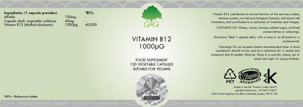 Vitamin B12 (Methylcobalamin) 1000µg - 120 Capsules