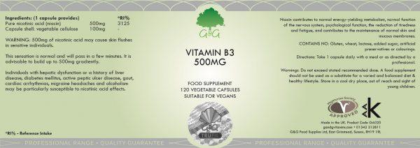 Vitamin B3 Niacin 500mg - 120 Capsules